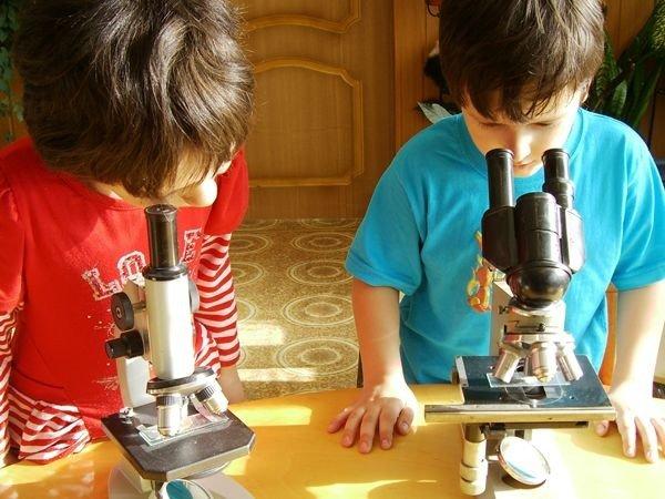 Детский сад комбинированного вида №1 Образование, наука