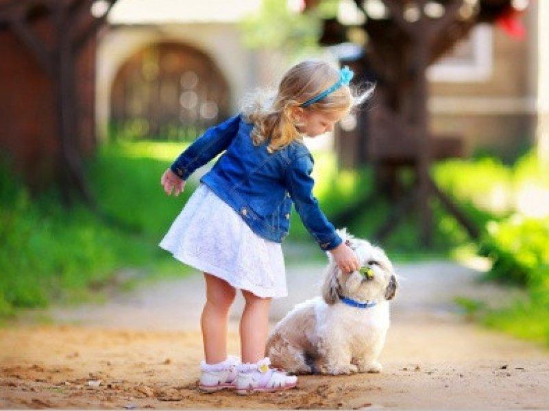 Любовь к собакам заложена на генетическом уровне