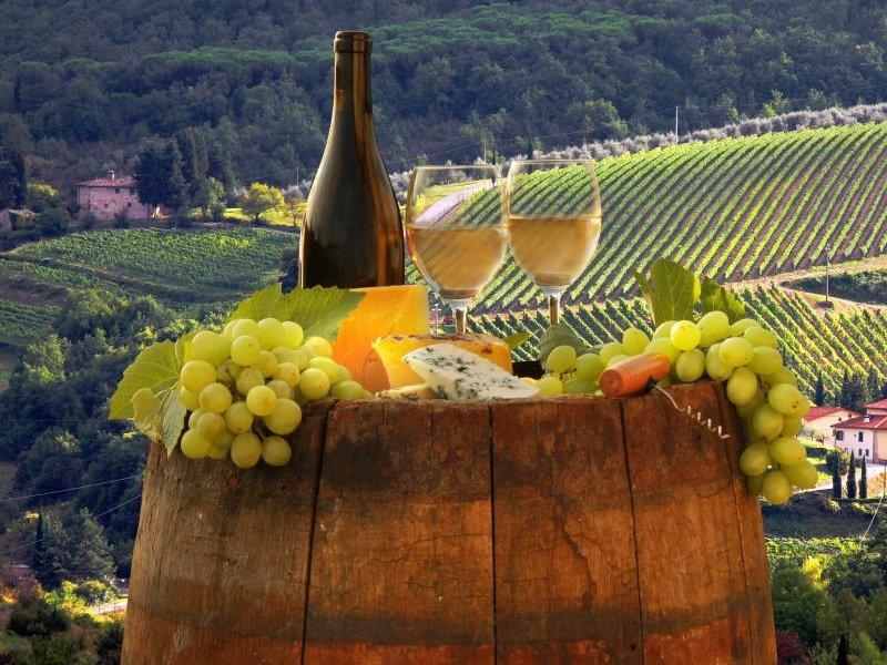На Кубани заложат новые виноградники и построят новый сырный завод