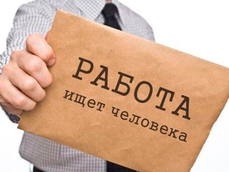 Названы самые редкие и необычные вакансии для россиян