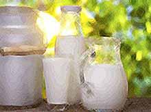 В Краснодарском крае  ужесточат проверки по выявлению «молочного» фальсификата