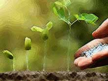 В Краснодарском крае  запустили производство импортозамещающих удобрений