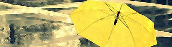 На Кубани неделя начнется с дождей