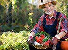 Получить надбавку к пенсии  в 2019 году смогут специалисты, отработавшие на селе не менее 30 лет