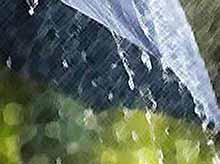 На Кубани непогода  не угрожает будущему урожаю