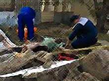 В Тимашевске обрушившаяся стена придавила отца и сына