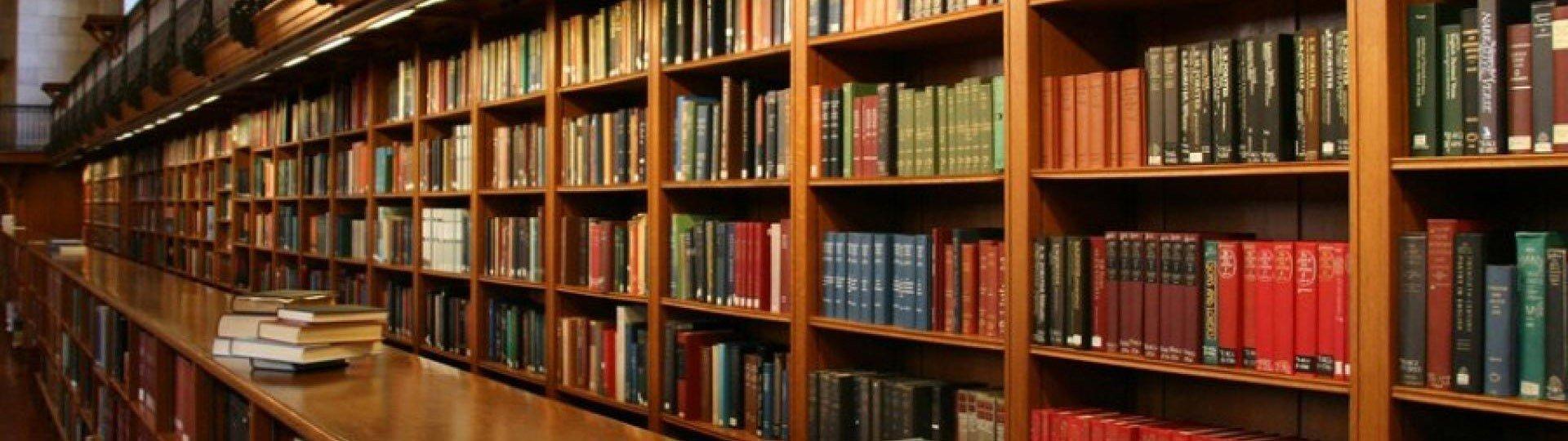 Городская библиотека Лукоморье
