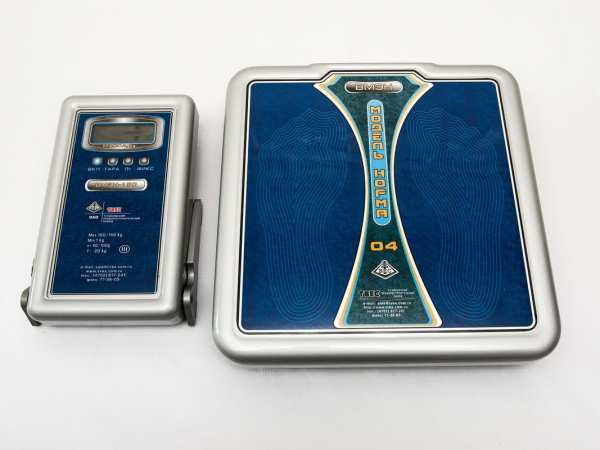 Весы ВМЭН-150 с автономным питанием и выносным п/у