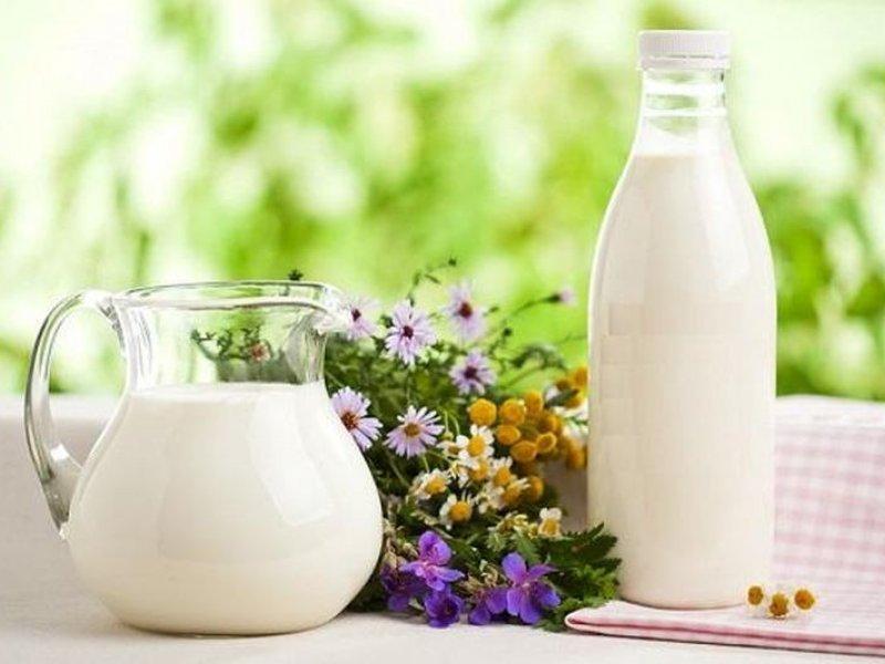 Краснодарский край увеличил производство молока до 1,058 миллиона тонн