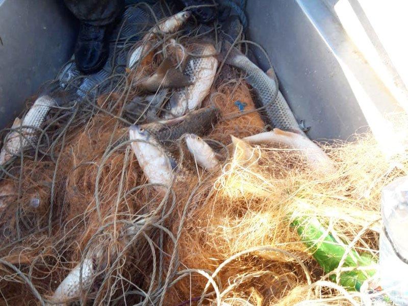 Запрещенные орудия лова в Азово-Черноморском рыбохозяйственном бассейне