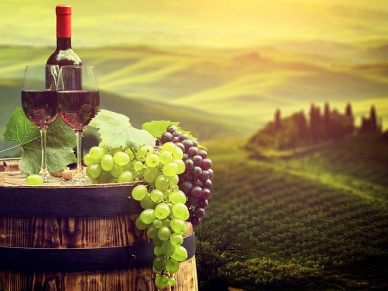 В России чиновникам запретили закупать импортные вина