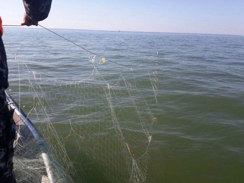 О правилах рыболовства для Азово-Черноморского рыбохозяйственного бассейна