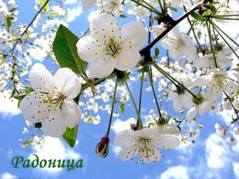 В Краснодарском крае Радоницу объявили выходным днем