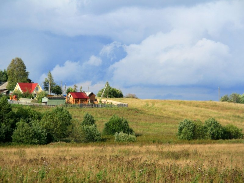 В России финансирование развития села будет значительно выше, чем предусмотрено госпрограммой