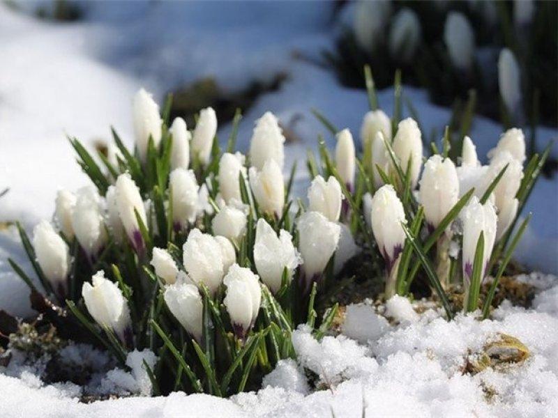 Россиян предупредили  об «опасной» погоде в марте