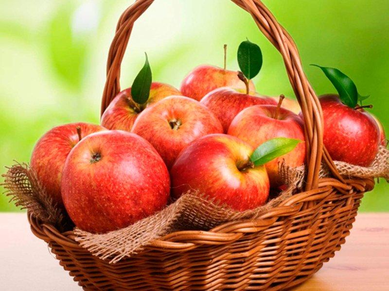 На Кубани зарегистрируют географическое наименование «Кубанские яблоки»