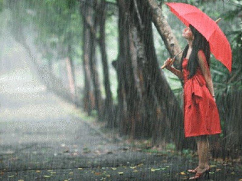 На Кубани прогнозируют сильные дожди