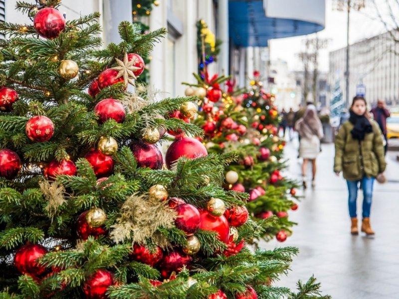 Минтруд объяснил  невозможность двухнедельных новогодних каникул