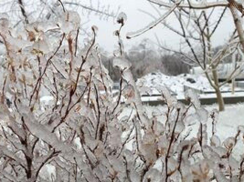 На Кубани сегодня прогнозируется снег и гололед, возможен ледяной дождь