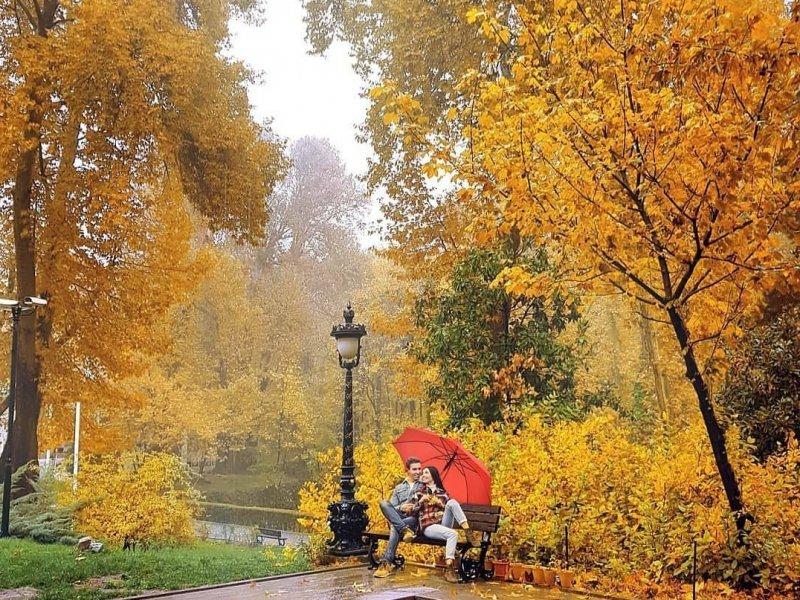 Россиянам прогнозируют теплый ноябрь, а на Кубани будет холоднее обычного