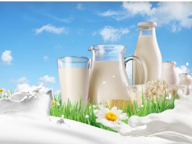 На Кубани произвели самый больший объем питьевого молока в стране