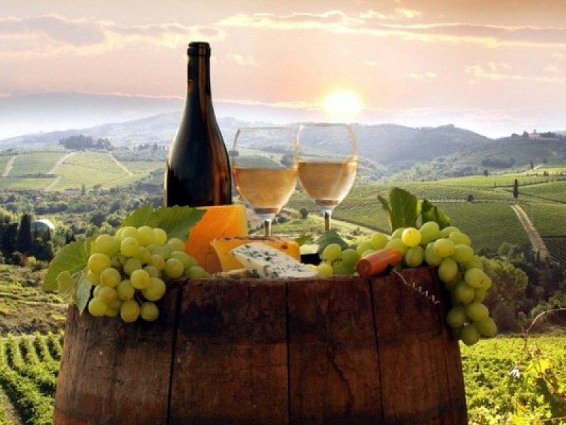 На Кубани создали новую географическую зону для производства вина