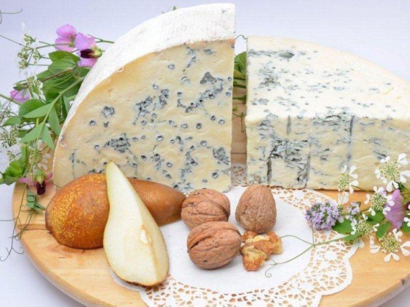 На Кубани  построят завод по производству сыров с белой и голубой плесенью