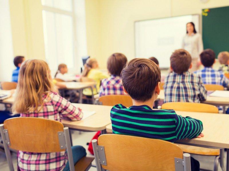 В России в школах введут должность советника по воспитанию