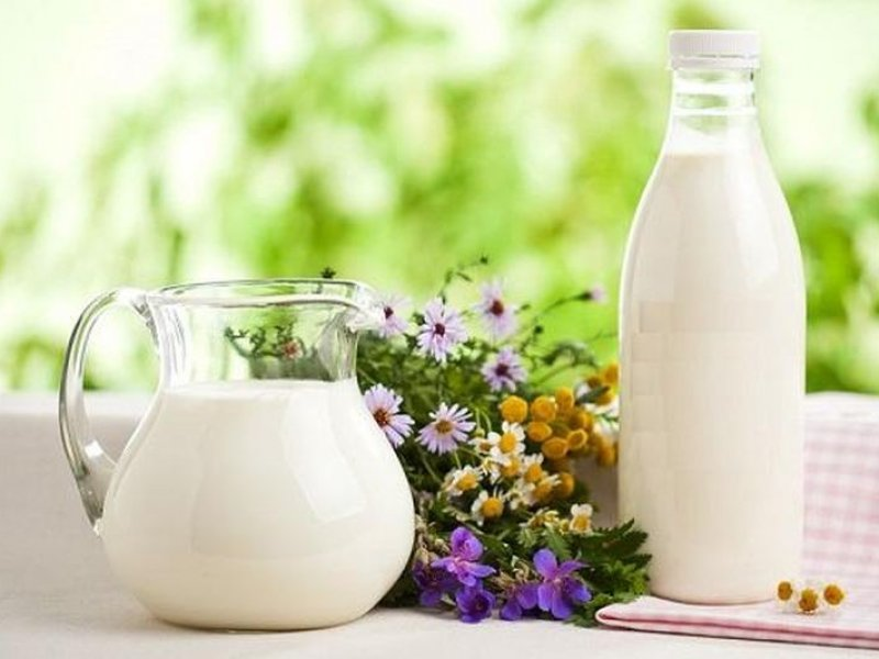 Диетологи рекомендуют пить молоко по утрам