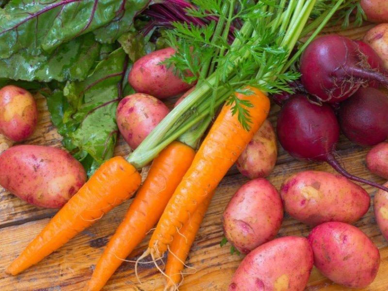 В России цены на картофель и морковь выросли почти на 40 %
