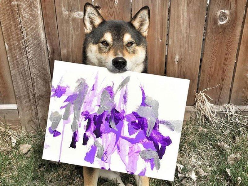 Собака Шиба ину любит рисовать абстрактные картины