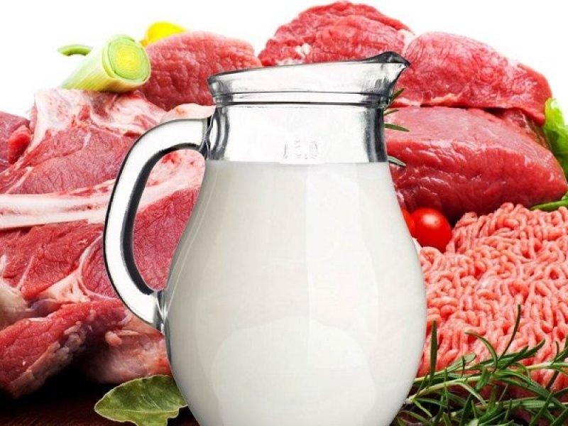 Россия увеличила экспорт мясной и молочной продукции на 21%
