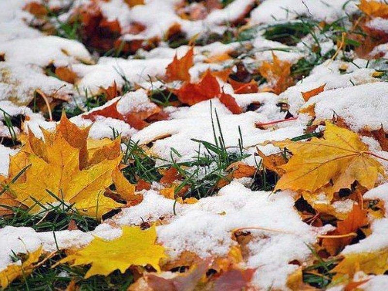 В Краснодарский край придут ночные морозы до 7-10 градусов