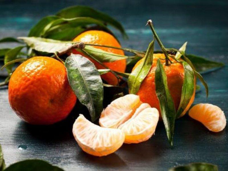 Как выбрать самые сладкие и экологичные сорта мандаринов