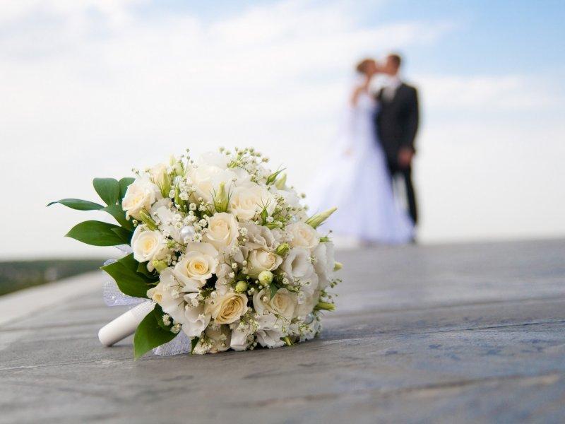 Россияне массово женились в «зеркальную» дату 02.02.2020