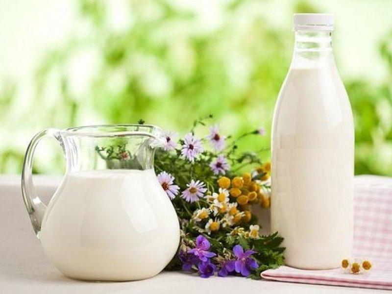 В России вырос объем реализации молока