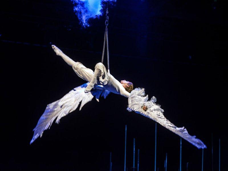 У акробатки рвутся ремни безопасности, она срывается вниз на высоте 9 метров и остается жива