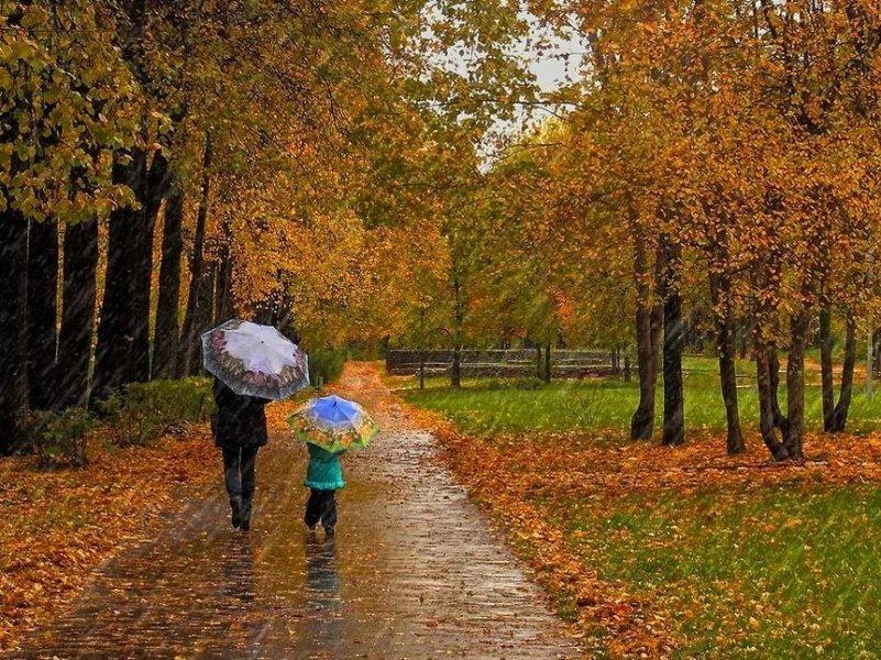 В Краснодарский край пришла осень