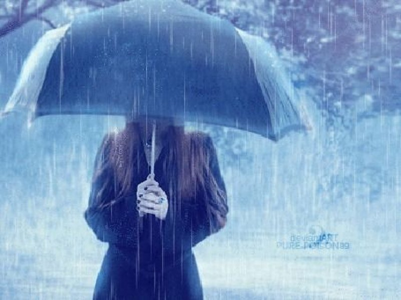 На Кубани в последний месяц  зимы всех ждут «погодные качели»