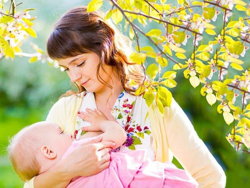 Пенсионный фонд начал выдавать маткапитал  на первого ребенка