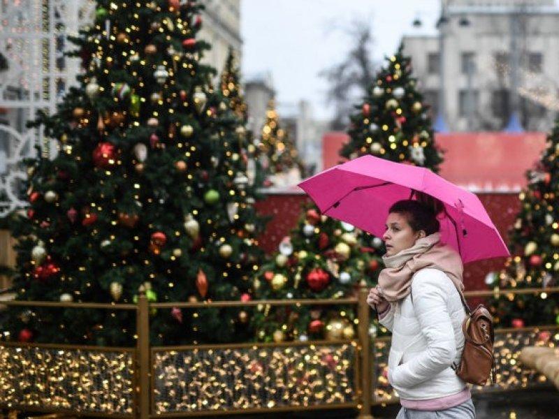 В России  новогодние праздники предлагают продлить до 24 января