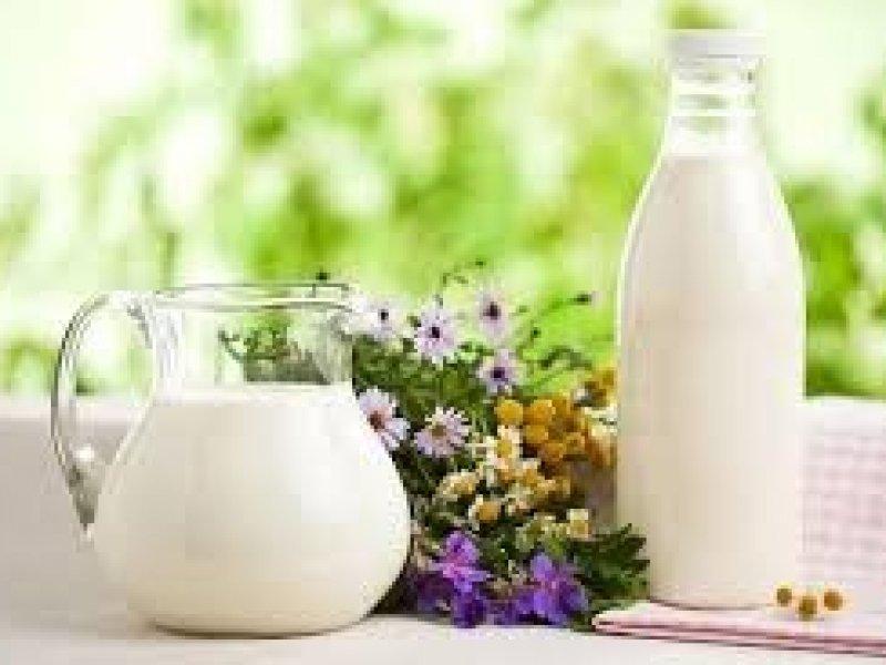 В России цена на молоко снизится на 20-25%