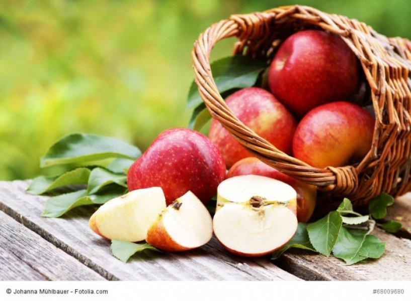 «Кубанские яблоки» признаны брендом