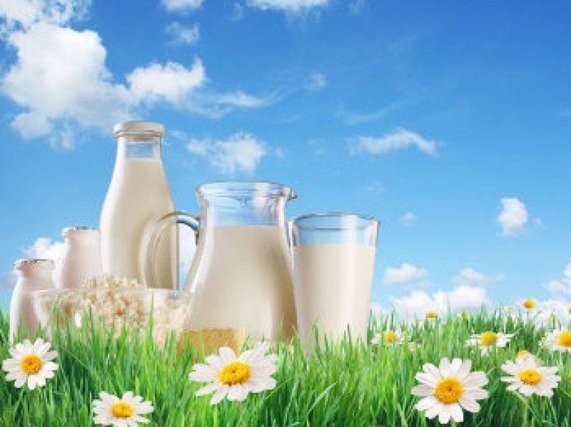 Кубань на 40% превысила план по экспорту молочной продукции