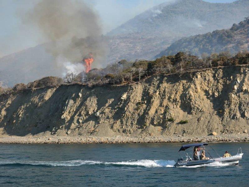 На Кубани второй день горят лесные массивы