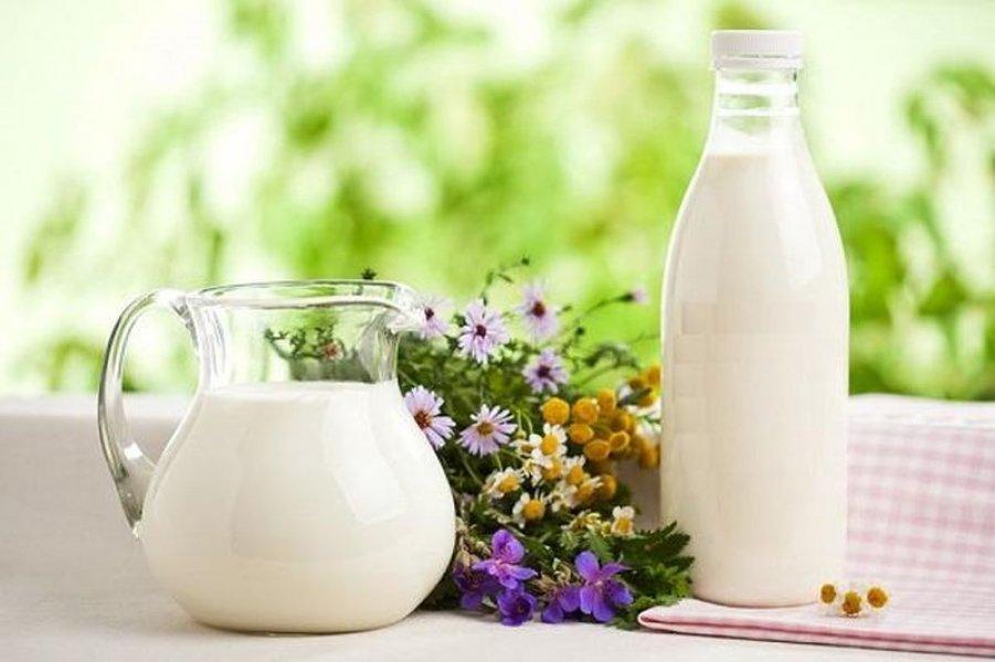 В России изменилась тройка лидеров по производству молока