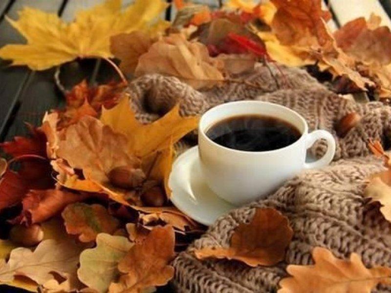 Кофе назвали опасным в период простуд