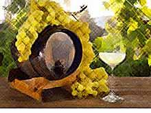 На Кубани впервые начнут производить «защищенные» вина