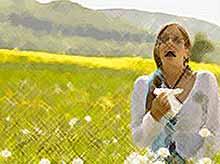 Почему аллергия обостряется летом