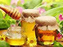Мед - идеальное природное лекарство